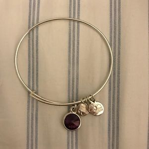 *RETIRED* Alex and Ani February Birthstone Bangle